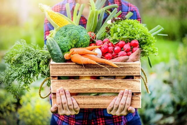 Box mit Gemüse (Foto: Adobe Stock, Milan)